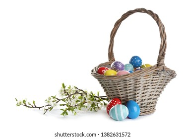 Painted Easter eggs in wicker basket and blossoming branches on white background