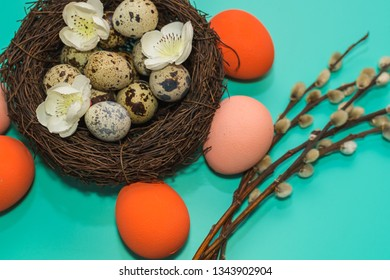 painted eggs and quail eggs in a nest with willow branches on a turquoise background. happy Easter card.