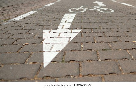 Painted marking with directional arrows for a bike path