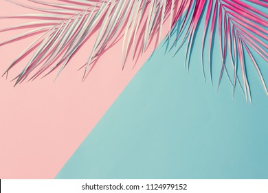 Painted palm leaves on pastel pink and blue background with copy space. Tropical summer concept. Minimal flat lay.