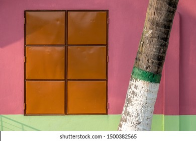 A painted palm tree trunk grows by a metal-shuttered window of a colorfully painted house.