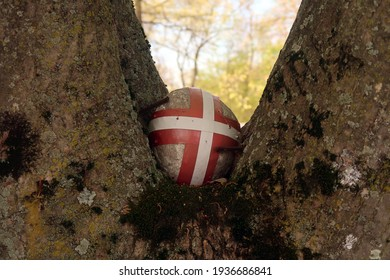 Painted rock in a tree.