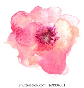 Painted Single Pink And Orange Watercolor Flower On Isolated White Background