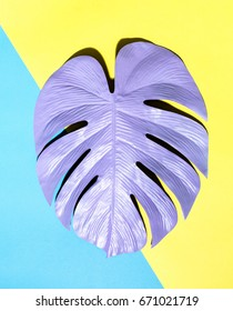 Painted tropical monstera leaf with hard shadow on a split color background