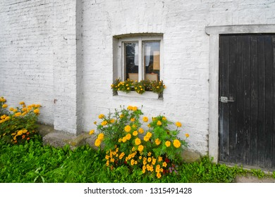 A painted white brick wall of a building in Porvoo Finland, with yellow flowers in the garden outside and the window box.