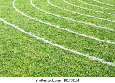 Painted white lines on grass as a racing track