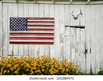 A painted wooden american flag, deer antlers, and a beautiful brown-eyed susan flowers in an old shed