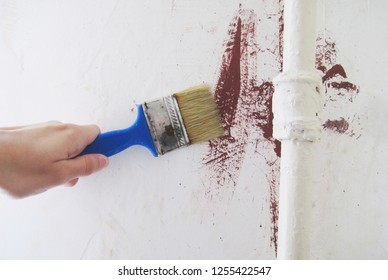 Painter Painting a House Wall with Small Paint Brush in Hand at Apartment Room for Repairs. Covering Old Paint in Building, Construction, Renewing, Painting and Renovation in the House Concept Theme