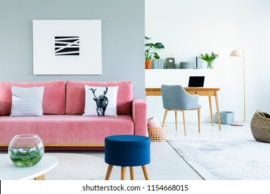Painting above pink sofa with pillows in open space interior with blue stool and armchair. Real photo