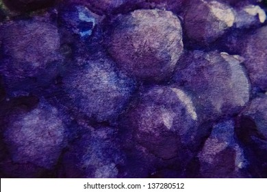 painting of purple grapes close up