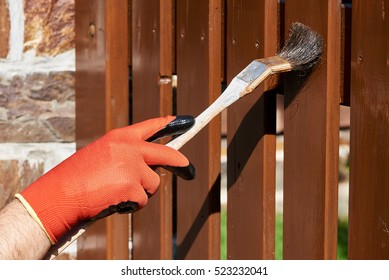 Painting wooden fence with a brown paint on a sunny day