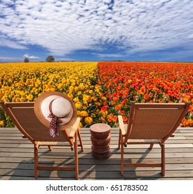 Pair of comfortable sun loungers next to field of flowers. Elegant women's straw hat hanging on a deck chair. The concept of recreation and eco-tourism