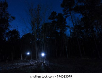 Pair of flashlights in the North Carolina woods with stars above