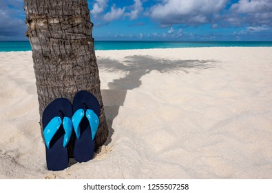 Pair of Flip Flops Leaning Against a Palm Tree on a Caribbean Beach