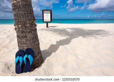 Pair of Flip Flops Leaning Against a Palm Tree and a Warning Sign on a Caribbean Beach