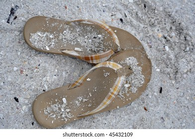 a pair of flip-flops sit on a sandy and shelly beach