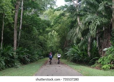 Pair of friends biking in a forest.