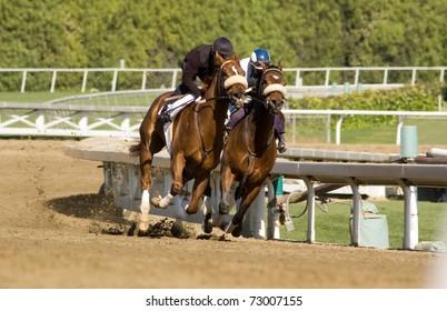 Pair of jockeys training horses on track in preparation for race