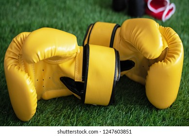 Pair of leather boxing gloves put on green grass ground floor,blurry light around