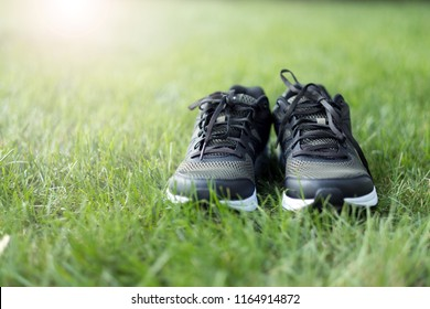 Pair of man sport shoes on green grass field