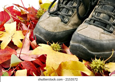 A pair of old dirty hiking boots surround by autumn leaves