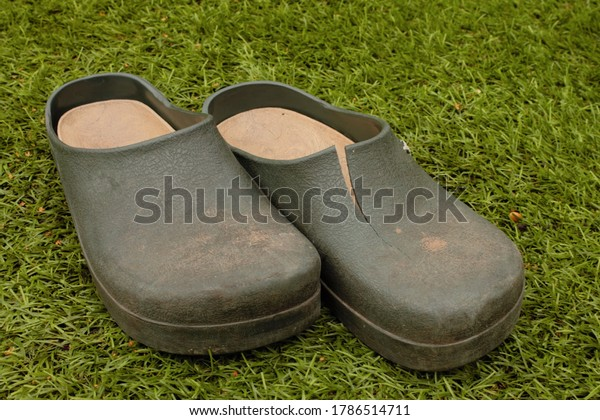 pair of old split and damaged gardening clogs, isolated on grass