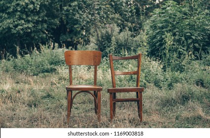 Pair old wooden chair outdoors. Two wooden folding chairs for rest. Around the lush grass and white flowers. Solar glare is played on a wooden surface. The environment offers privacy.