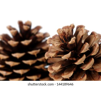 a pair of pine cone isolated on white background