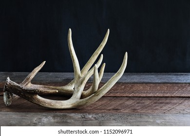 bb42e1847779e Pair of real white tail deer antlers over a rustic wooden table against a  black background
