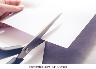 Pair Of Scissors Cutting White Paper, Holded By Female Hands