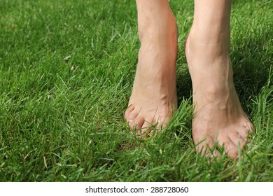 A pair of women's feet on the green grass.  Legs crossed each other. Legs in focus from the side pictures. Nature, lawn, yard