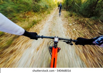 pair of young men mountain biking in a forest. Cycling