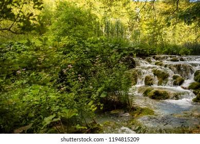 Río, Paisaje, Naturaleza