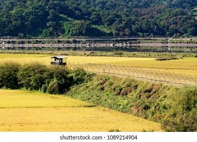 PAJU, SOUTH KOREA-SEPTEMBER 28, 2017:  Demilitarized zone along Korea is 155 mile long.