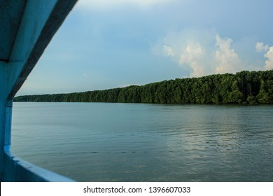 Pak Pra Sae River, two sides of the mangrove forest