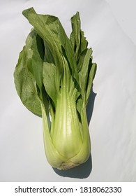 Pakcoy or bok coy is a popular vegetable. This vegetable, also known as mustard greens, is easy to cultivate and can be eaten fresh or processed into pickles.