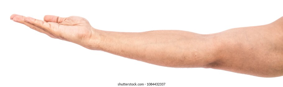 Pakistani Indian Muslim showing straight hand with empty palm, Man's hand isolated on white background