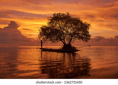 Pakpra, Phatthalung/Thailand-April 8, 2019: A fisherman on longtail boat and a cork tree or mangrove apple agianst beautiful sky background and sunlight in the morning.