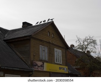 Pakruojis, LITHUANIA -  MAY 1,2010 - Sculptures of birds on the roof of the house.