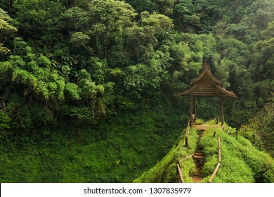 Pakse area with amazing places - Wooden Shed close to the waterfall, Laos, Asia