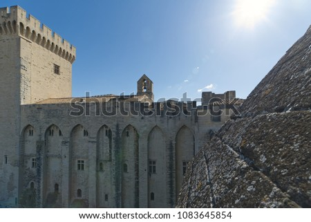 Palace of the Popes of Avignon (roof) - Camargue - Provence - France