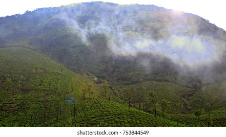 the Palace of the tea estate and mountain merge together and freezing movement by cooling clouds in VALPARAI,COIMBATORE TAMILNADU INDIA - 8 NOVEMBER 2017 In Valparai,tamil nadu, India 8th november2017