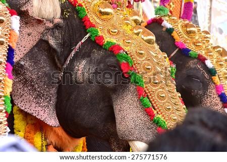 Palakkad Kerala India April 03 2015 Stock Photo Edit Now 275771576