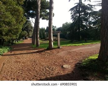 Palatine Hill/Rome/Italy