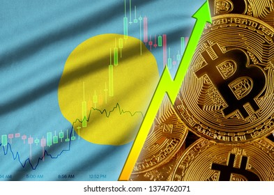 Palau flag and cryptocurrency growing trend with many golden bitcoins