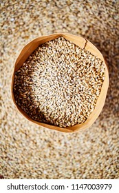 Pale Ale barley malt, used for the production of craft and home beer.