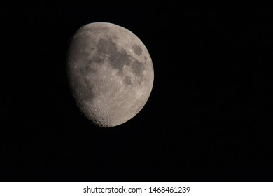Pale moon in the night