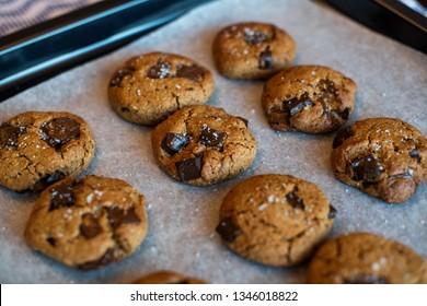 paleo chocolate chunk tahini cookie. salty cookie.