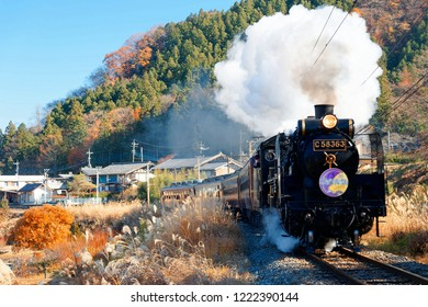 The Paleo Express hauled by a steam locomotive travels on Seibu Chichibu Railway thru the idyllic countryside with fall colors on the mountains & gold Miscanthus grass in the field, in Saitama, Japan