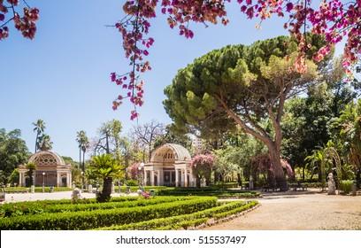 Palermo Botanical Gardens (Orto Botanico), Palermo, Sicily, Italy, Europe